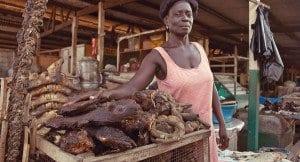 consumo di carne di animali selvatici in Africa