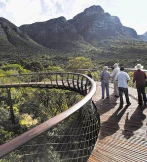 Sudafrica: sospesi nell'eden