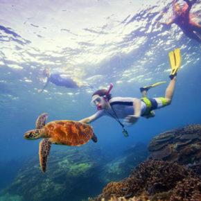 Mozambico: isole da favola
