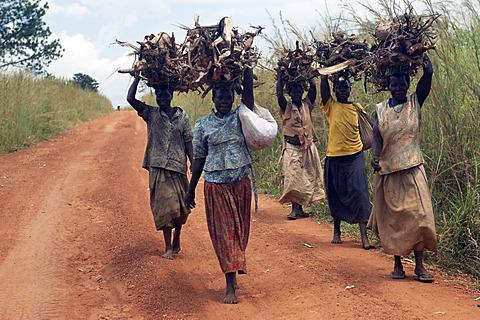 incontri donna Zambia esempi di incontri di profilo interessi