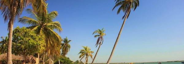 Senegal: campeggio in Casamance