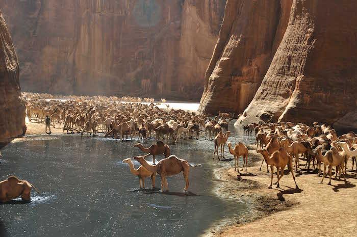 Ciad: canyon, laghi e nomadi