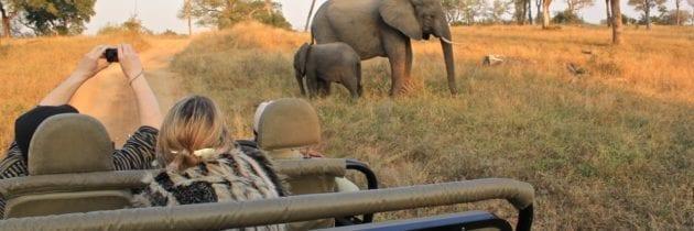 Turismo africano, un comparto giovane e sempre più «rosa»