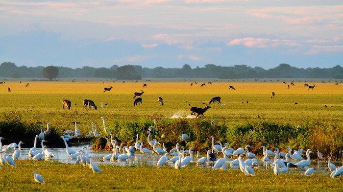 Zambia: charme coloniale