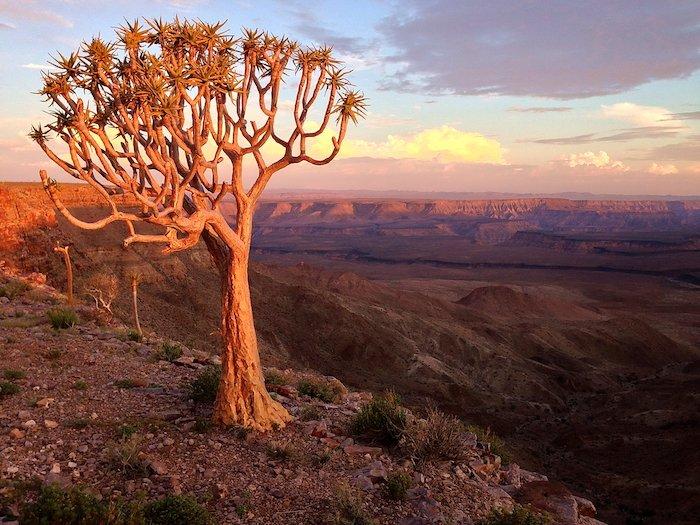 Namibia: trekking nel canyon