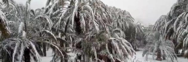Marocco – Inverno atipico: nevica di nuovo nel caldo sud