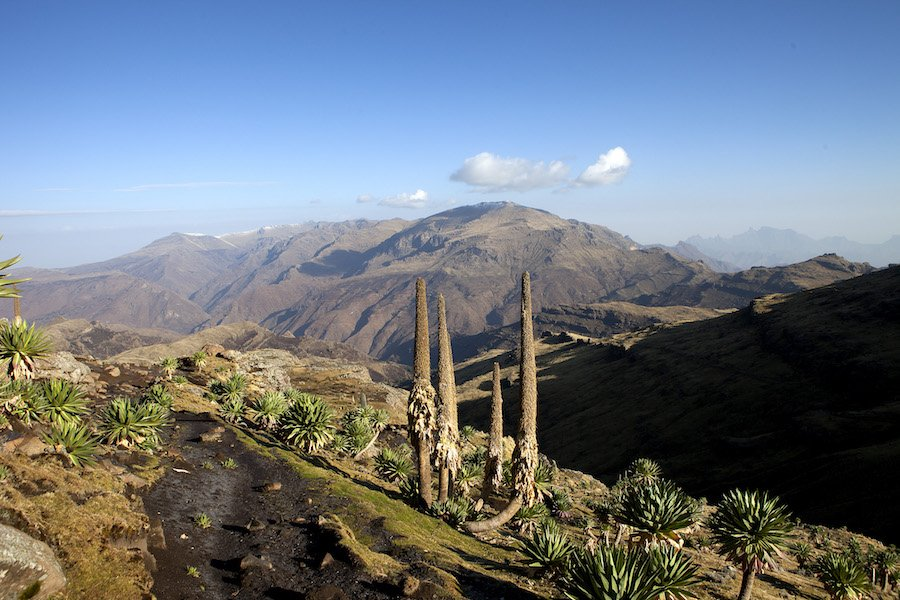 Etiopia: trekking sull'altopiano