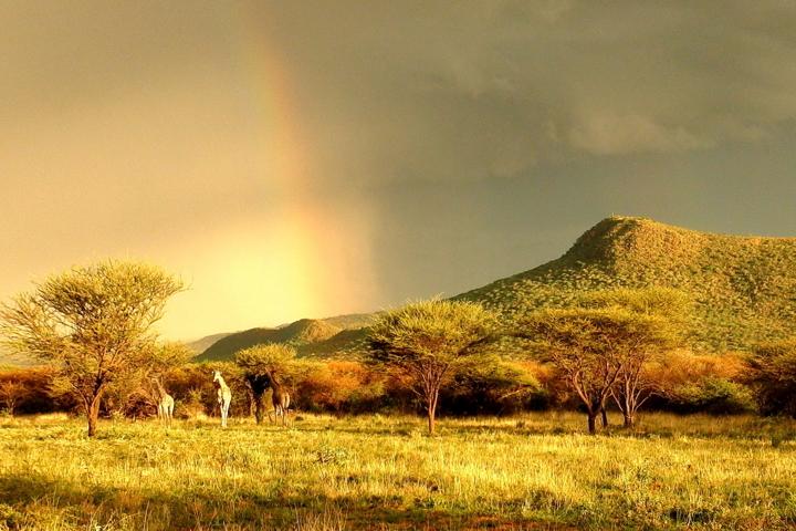siti di incontri online Namibia miglior gay dating app su Android