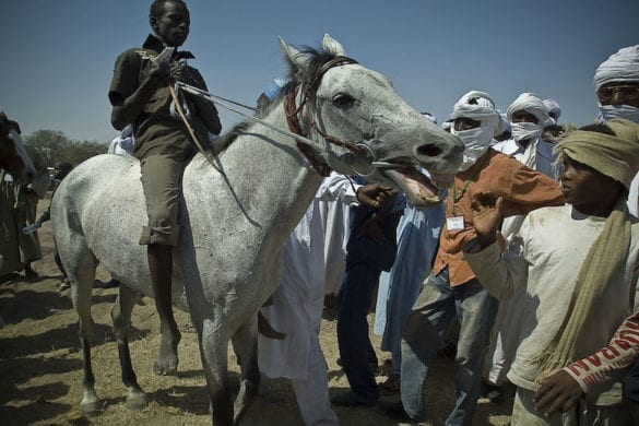 Niger: i fantini del Sahel