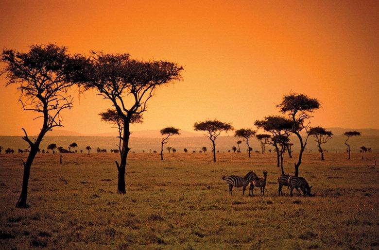 Incontri a Gweru Zimbabwe