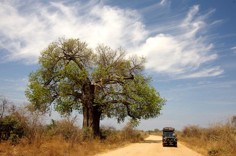 Incontri a Bulawayo Zimbabwe