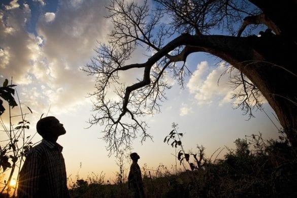 Malawi 13